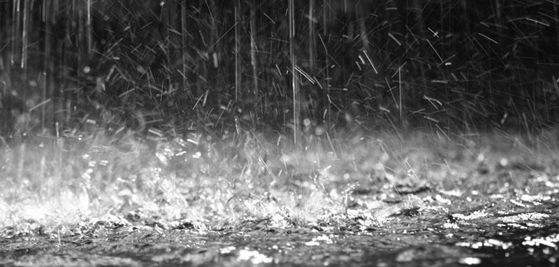 Pioggia di aggiornamenti WordPress
