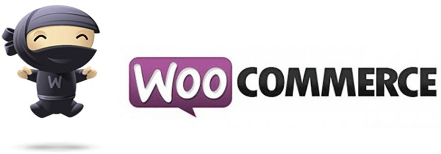 Usare WooCommerce cambiare il TAG Descrizione Prodotto