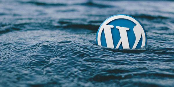 Gli errori di WordPress da evitare