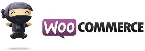 Consulenza e Assistenza Woocommerce e realizzazione siti ecommerce con Woocommerce